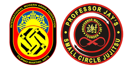 modern arnis and small circle jujitsu